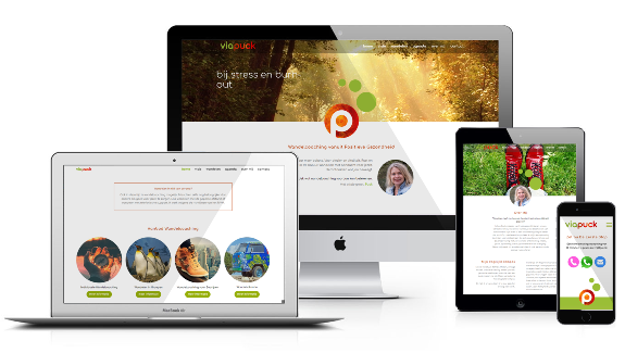 ViaPuck, Responsive Wordpress Website door BoschCommunicatie te Zutphen